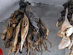 Zhangjiajie Venison Bacon