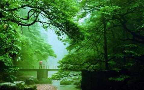 Golden whip stream(Jinbianxi)