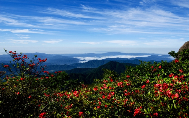 Dawei Mountain