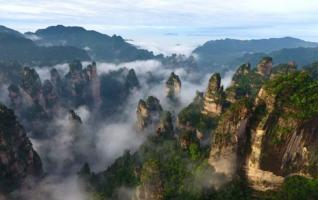 A sea of clouds walks among Zhangjiajie forest park